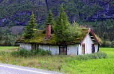 Позаботьтесь о строительных материалах для крыши