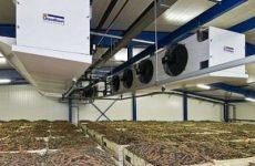 Овощехранилище – температурные условия и система хранения