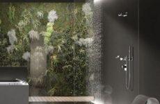 Тропический душ – выбор и уход за ним